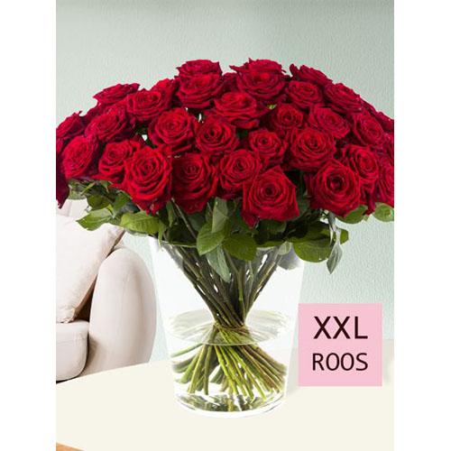 50 rode rozen - Red Naomi