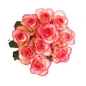 Rozen Swirling Pink